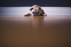Demissão de funcionários: o que você precisa saber?