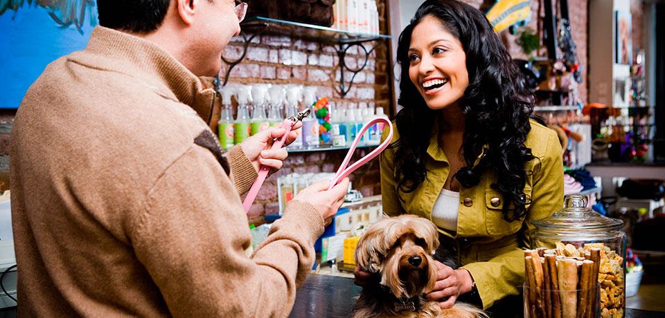 gestão de pet shop