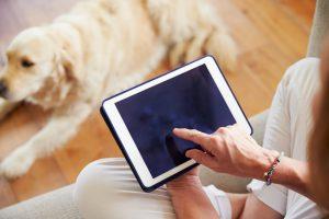 Aplicativo para pet shop: como ajuda no relacionamento com cliente