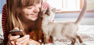 Ideias para pet shop: confira o feedback do seu atendimento!