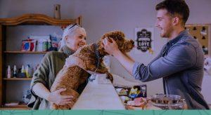 Como fazer a gestão de pessoas na pet shop