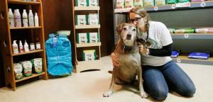 Como produzir mais em menos tempo no seu Pet Shop: veja 5 formas