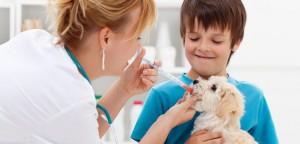 Eu quero abrir o meu pet shop ou clínica veterinária: Margem de contribuição e ponto de equilíbrio