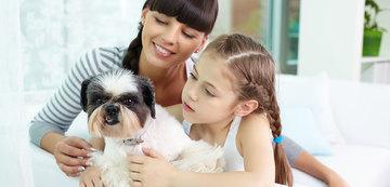 como fidelizar clientes de pet shop