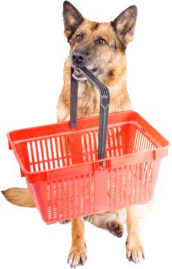 fidelizar clientes de pet shop