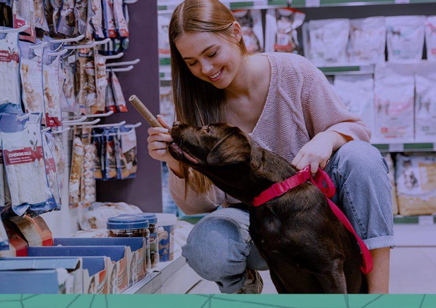 dicas para aumentar as vendas na sua pet shop