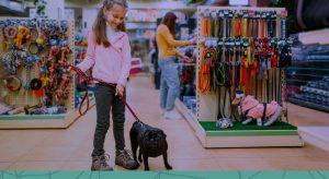 Como pequenos empreendedores do ramo pet podem competir com grandes lojas do setor?