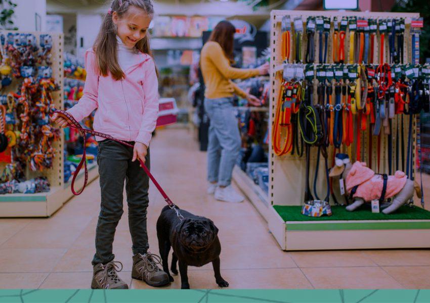 Como pequenos empreendedores do ramo pet podem competir com grandes lojas do setor