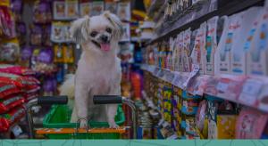 Ruptura de estoque ou estoque parado no pet shop: como lidar com eles?