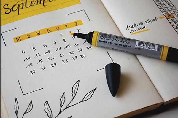 calendario-pet-shop