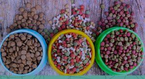 Como melhorar o controle de venda de produtos a granel?