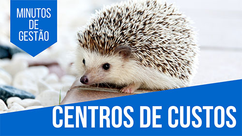 centro-de-custos-pet-shop