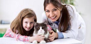 Como abrir uma clínica veterinária: passo a passo para o sucesso