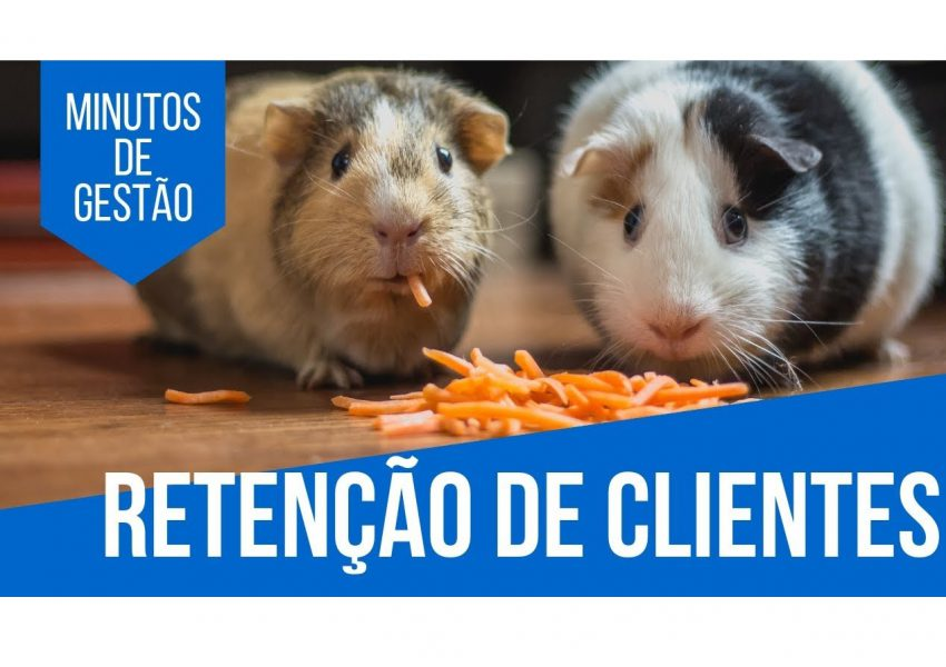 como fidelizar o cliente pet shop