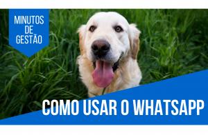 [Minutos de Gestão] 4 dicas de como usar o Whatsapp em Pet Shops