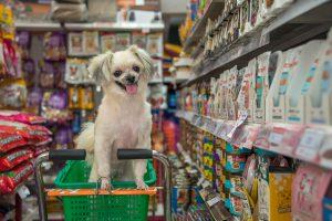 [PALESTRA] Controle de estoque para pet shop: como acertar nas compras