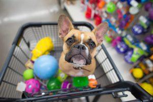 Quais os produtos mais vendidos em pet shop?