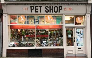 Como escolher o ponto de vendas para sua pet shop