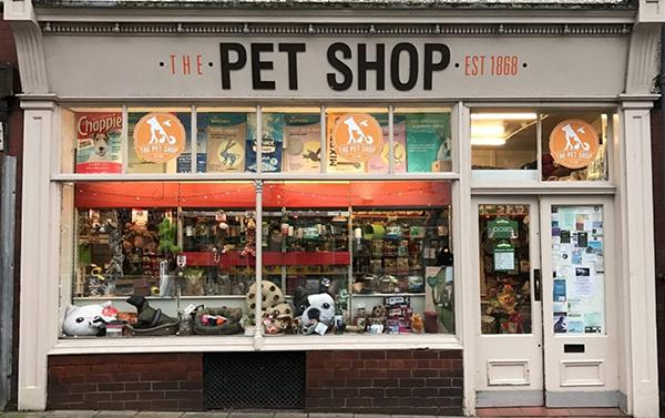 Resultado de imagem para pet shop