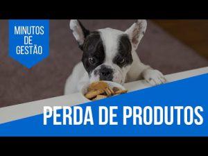 Gestão de Estoque para Pet Shops: como lidar com a perda de produtos?