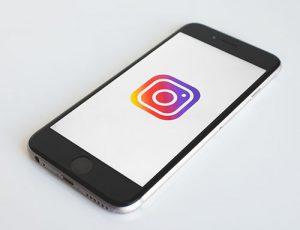 Instagram para pet shop: como bater boas fotos e ter um perfil sensacional