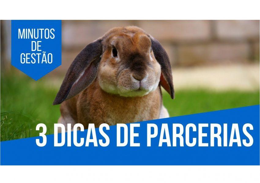 dicas-de-parcerias-para-pet-shops