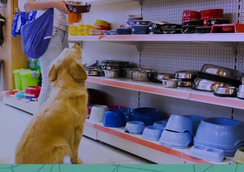 Você acompanha o ticket médio por animal na sua pet shop?