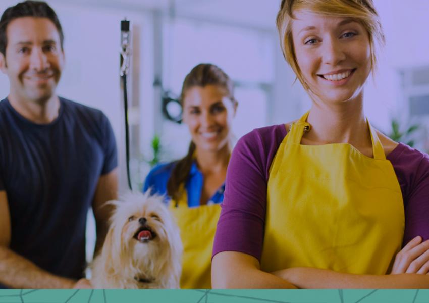 10 erros comuns na gestão de pet shop que podem prejudicar seus lucros!