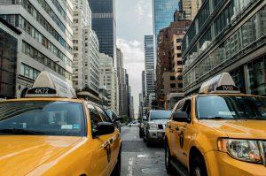 [PALESTRA] Táxi Dog: faça sua pet shop crescer com esse serviço